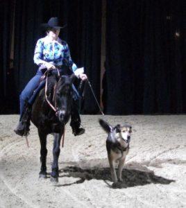 Hund und Pferd großer Ring 2009