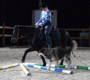 Hund und Pferd großer Ring2